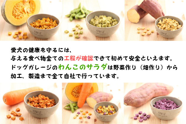 愛犬の健康を守るには、与える食べ物全ての工程が確認出来て初めて安全といえます。 ドッグガレージのわんこのサラダは野菜作り(畑作り)から加工、製造まで全て自社で行っています。